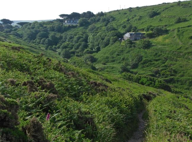 Cornwall Summer 2008 126